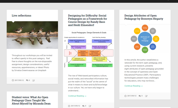 Developing an Assignment Redesign Program to Promote Open Pedagogy