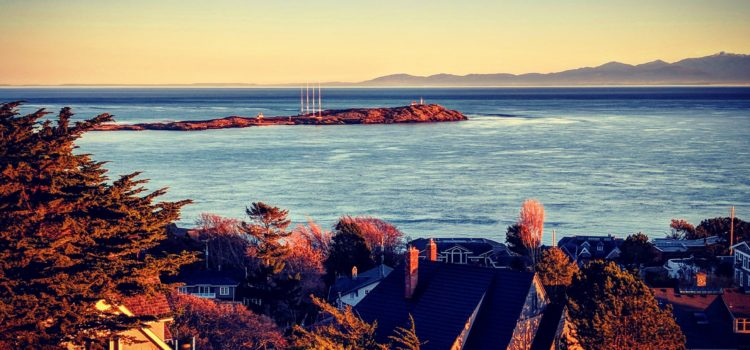 Taking on a new role at the University of Victoria